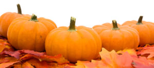 Fall leaves with a pumpkin isolated on a white background, fall leaves border